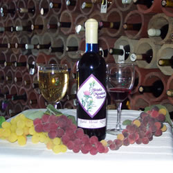 Enjoy a glass of red or white wine at Thistle Meadow Winery